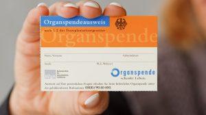 Organspendeausweis was ist zu beachten